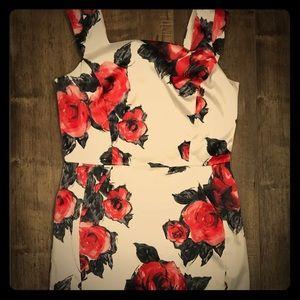 Joseph Ribkoff Rose Sheath Dress (sz 10)